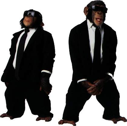 M.I.B.: Monkeys In Black