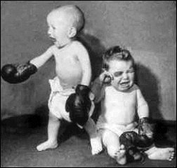 Babies are now boxing