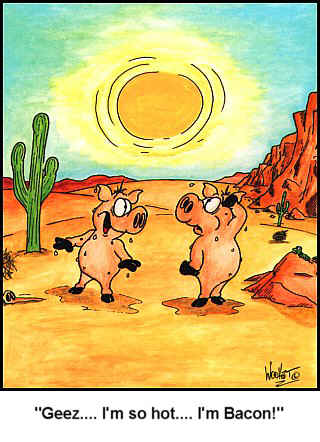 Pigs are in the desert