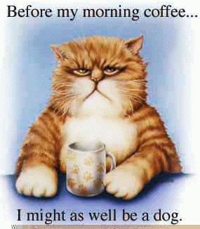 http://www.ahajokes.com/cartoon/cats.jpg