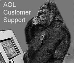 AOL's support team