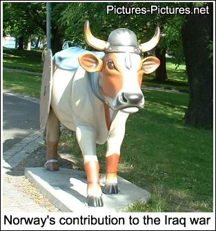 Norway's War Efforts