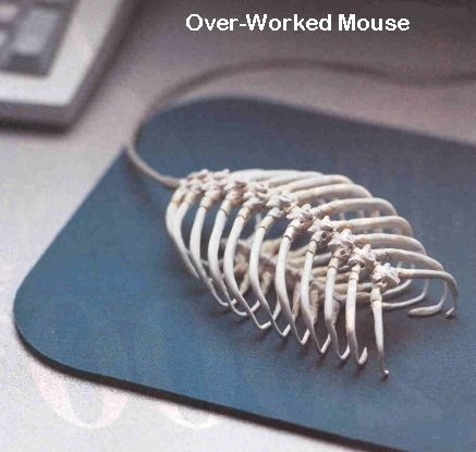 Overworked Mouse