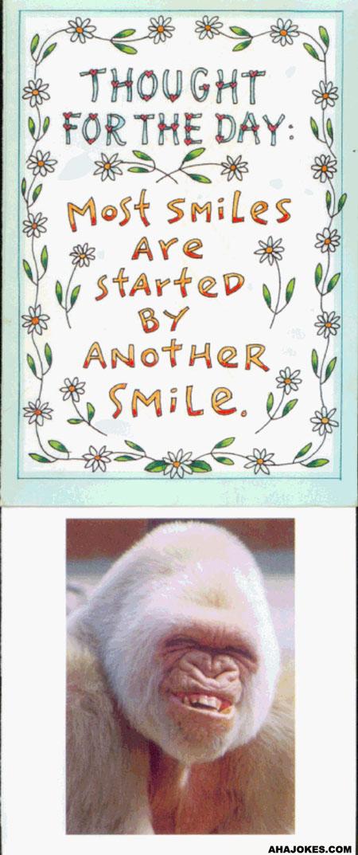 http://www.ahajokes.com/cartoon/smile.jpg