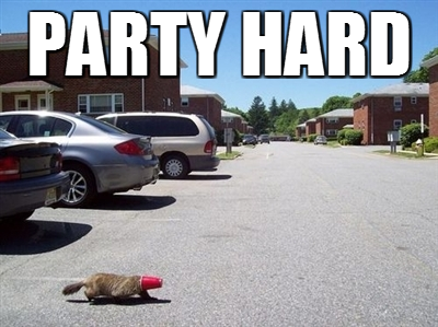 Aha! Jokes: Funny Pictures - Party hard!
